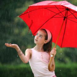 03 ploaia