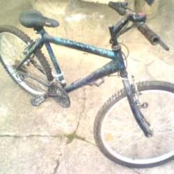 03 bicicleta
