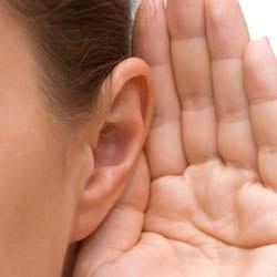 04 auzul ureche