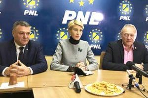 """Concluzia prim-vicepreşedintelui PNL, Raluca Turcan: """"Acum, toată lumea vrea să se angajeze la stat"""""""